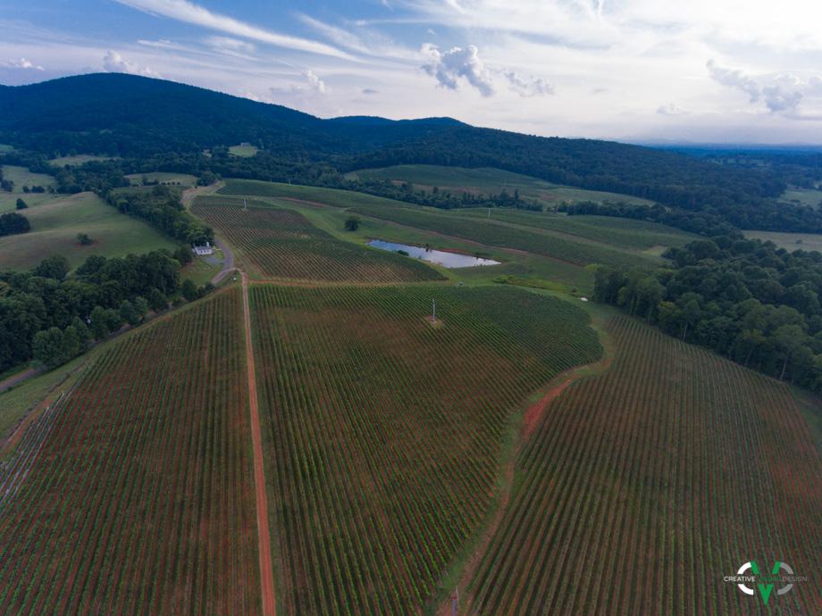 Barboursville Winery - Barboursville, VA